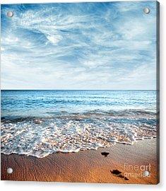 Seashore Acrylic Print by Carlos Caetano