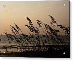 Seaside Guardians Acrylic Print by JAMART Photography