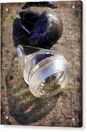 Seaside Objects Acrylic Print by Lola Bronzini