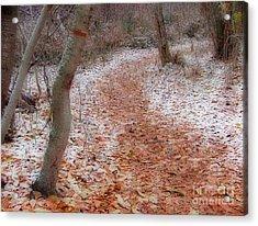 Season's Change Acrylic Print