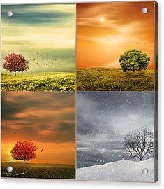 Seasons' Delight Acrylic Print by Lourry Legarde