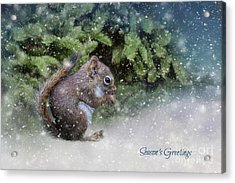 Acrylic Print featuring the photograph Season's Greetings by Eva Lechner