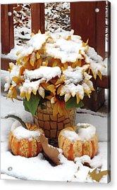 Seasons Meet And Greet Acrylic Print by Ann Johndro-Collins