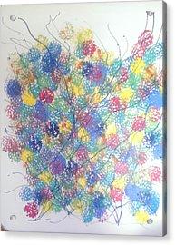 Seasponge Acrylic Print by Judi Goodwin
