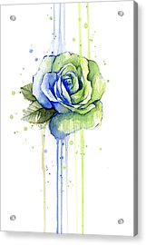 Seattle 12th Man Seahawks Watercolor Rose Acrylic Print
