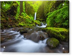 Seclusion Acrylic Print by Darren  White