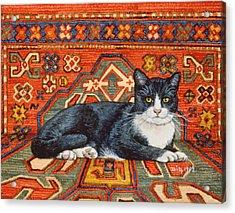 Second Carpet Cat Patch Acrylic Print by Ditz