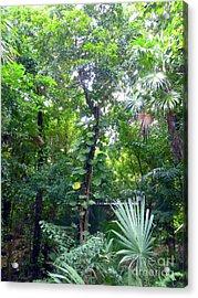 Acrylic Print featuring the photograph Secret Bridge In The Tropical Garden by Francesca Mackenney