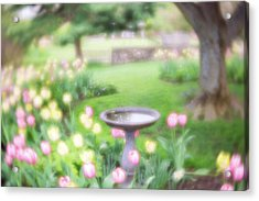 Acrylic Print featuring the photograph Secret Garden 1 by Brian Hale