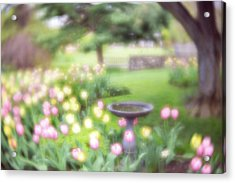 Acrylic Print featuring the photograph Secret Garden 2 by Brian Hale