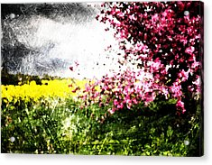 Secret Garden Acrylic Print by Andrea Barbieri