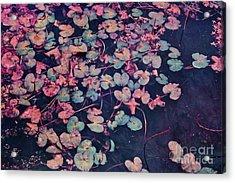Secret Pond Acrylic Print