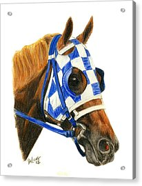 Secretariat With Blinkers Acrylic Print by Pat DeLong