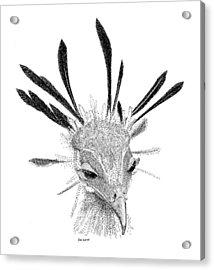 Secretary Bird Acrylic Print