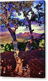 Sedona # 48 - Courthouse And Cathedral Rocks Acrylic Print
