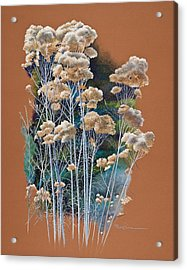 Sedona Rabbit Brush Acrylic Print