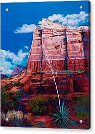 Acrylic Print featuring the painting Sedona Red Rock by M Diane Bonaparte