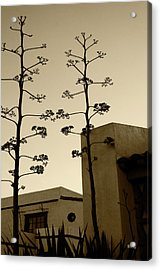 Acrylic Print featuring the photograph Sedona Series - Desert City by Ben and Raisa Gertsberg