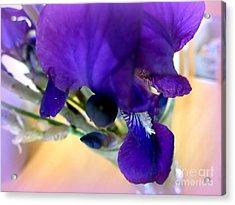 Sedona Wild Iris Acrylic Print