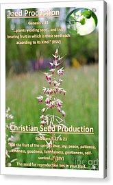 Seed Production Acrylic Print