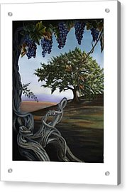 Seeds Of Eden Acrylic Print by Kathleen Romana