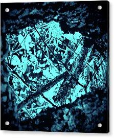 Seeing Through Trees Acrylic Print