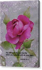 Acrylic Print featuring the photograph Seek Me With All Your Heart by Kate Word