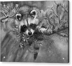 Seeking Mischief - Black And White Acrylic Print by Lucie Bilodeau