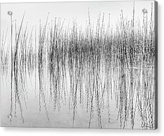 Acrylic Print featuring the photograph Seismograph by Dee Browning