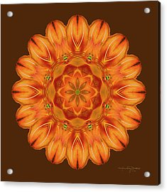 Selu's Song Acrylic Print by Karen Casey-Smith