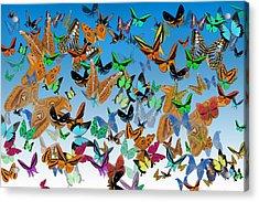 Sending Happy Wishes Acrylic Print by Betsy Knapp