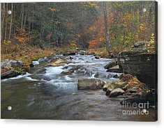 Seneca Creek Autumn Acrylic Print