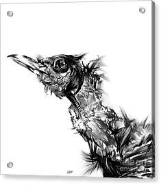 Senescence 5 Acrylic Print