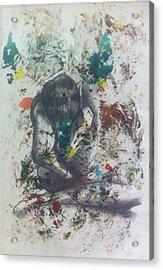 Sentimientos Encontrados Acrylic Print