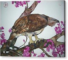 Sentinel Acrylic Print by Audrey N Reda