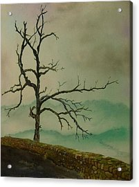 Sentinel Of The Shenandoah  Acrylic Print by Nicole Angell