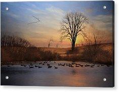 Sentinels Of Spring Acrylic Print by Lori Deiter