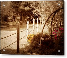 Sepia Garden Acrylic Print by Julie Hamilton