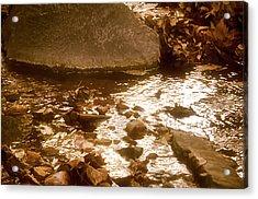 Sepia Sunlight Acrylic Print by Michael Putnam