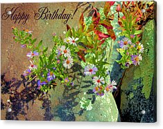 September Birthday Aster Acrylic Print by Kristin Elmquist
