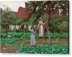 September Acrylic Print by Edmund Blair Leighton
