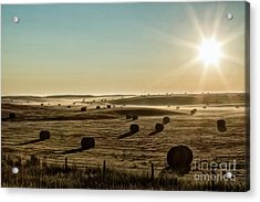 Acrylic Print featuring the photograph September Hay by Brad Allen Fine Art