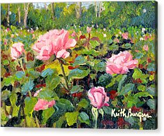 September Roses Acrylic Print by Keith Burgess