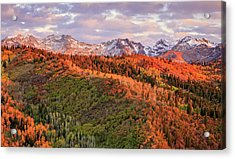 Acrylic Print featuring the photograph September Snow In The Wasatch Back. by Johnny Adolphson