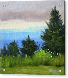 Acrylic Print featuring the painting Sequim Vista by Nancy Merkle