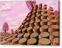 Sequoiadendron Nemus Acrylic Print by Patricia Van Lubeck