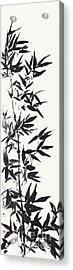 Serene Bamboo Acrylic Print by Nadja Van Ghelue