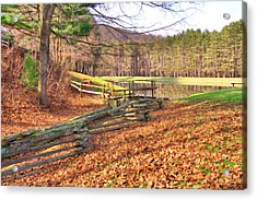 Acrylic Print featuring the photograph Serene Lake by Gordon Elwell