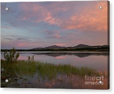 Serene Lake Acrylic Print by Iris Greenwell
