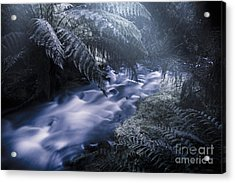 Serene Moonlit River Acrylic Print